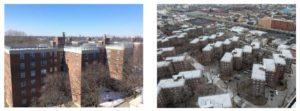 central brooklyn nycha housing